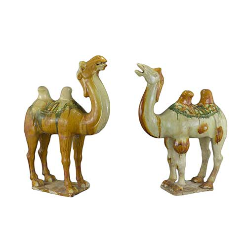 Chinese Tang Dynasty 618-908AD Sancai glazed pottery camels.